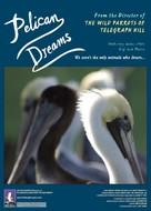 Pelican Dreams - Movie Poster (xs thumbnail)