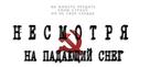 Despite the Falling Snow - Russian Logo (xs thumbnail)
