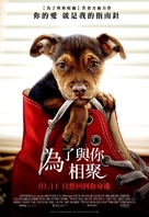 A Dog's Way Home - Taiwanese Movie Poster (xs thumbnail)