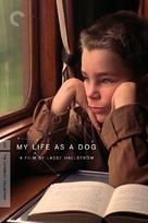 Mitt liv som hund - DVD movie cover (xs thumbnail)