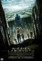 The Maze Runner - Polish Movie Poster (xs thumbnail)