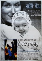 A Cry in the Dark - Turkish Movie Poster (xs thumbnail)