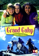 """""""The Saddle Club"""" - French DVD movie cover (xs thumbnail)"""