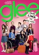 """Glee"" - Brazilian DVD movie cover (xs thumbnail)"