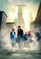 Fantastic Beasts and Where to Find Them - Andorran Movie Poster (xs thumbnail)