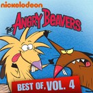 """The Angry Beavers"" - DVD cover (xs thumbnail)"