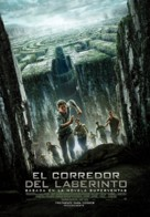 The Maze Runner - Spanish Movie Poster (xs thumbnail)