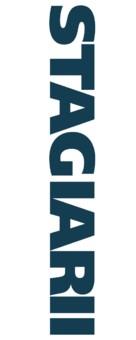 The Internship - Romanian Logo (xs thumbnail)