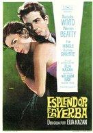 Splendor in the Grass - Spanish Movie Poster (xs thumbnail)
