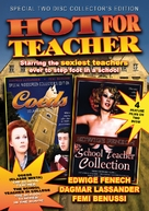 L'insegnante viene a casa - DVD cover (xs thumbnail)