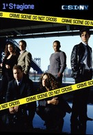 """CSI: NY"" - Italian DVD movie cover (xs thumbnail)"