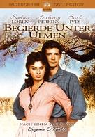 Desire Under the Elms - German DVD movie cover (xs thumbnail)
