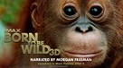 Born to Be Wild - Movie Poster (xs thumbnail)