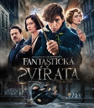 Fantastic Beasts and Where to Find Them - Czech Movie Cover (xs thumbnail)