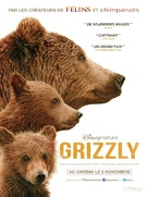 Bears - French Movie Poster (xs thumbnail)