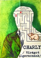 Charly - Hungarian Movie Poster (xs thumbnail)