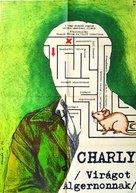 Charly - Hungarian Movie Poster (xs thumbnail)