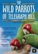 The Wild Parrots of Telegraph Hill - Movie Cover (xs thumbnail)