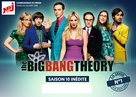 """""""The Big Bang Theory"""" - French Movie Poster (xs thumbnail)"""