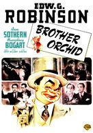 Brother Orchid - DVD movie cover (xs thumbnail)