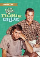 """The Many Loves of Dobie Gillis"" - DVD cover (xs thumbnail)"