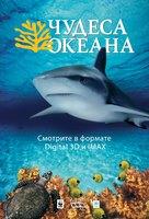 Ocean Wonderland - Russian Movie Poster (xs thumbnail)