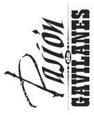 """""""Pasión de gavilanes"""" - Logo (xs thumbnail)"""