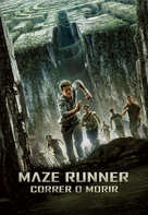 The Maze Runner - Argentinian DVD cover (xs thumbnail)