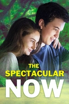 The Spectacular Now - DVD movie cover (xs thumbnail)