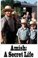 Amish: A Secret Life - Movie Cover (xs thumbnail)