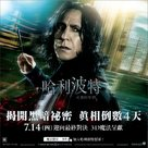 Harry Potter and the Deathly Hallows: Part II - Taiwanese Movie Poster (xs thumbnail)
