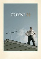 A Serious Man - Slovenian Movie Poster (xs thumbnail)