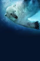 Polar Bears: Spy on the Ice - Key art (xs thumbnail)