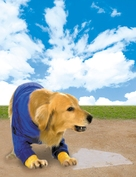 Air Bud: Seventh Inning Fetch - Key art (xs thumbnail)