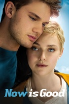 Now Is Good - DVD cover (xs thumbnail)