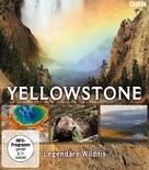 """Yellowstone"" - German Blu-Ray movie cover (xs thumbnail)"