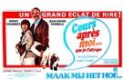 Cours après moi que je t'attrape - Belgian Movie Poster (xs thumbnail)