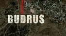 Budrus - Movie Poster (xs thumbnail)