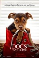 A Dog's Way Home - Dutch Movie Poster (xs thumbnail)