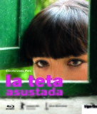 La teta asustada - Swiss Movie Cover (xs thumbnail)