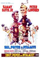 Salt and Pepper - Belgian Movie Poster (xs thumbnail)