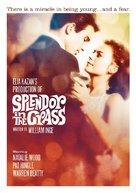 Splendor in the Grass - Movie Cover (xs thumbnail)