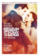 Splendor in the Grass - Movie Cover (xs thumbnail)
