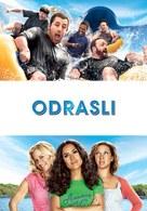 Grown Ups - Slovenian Movie Poster (xs thumbnail)
