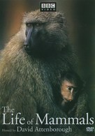 """""""The Life of Mammals"""" - DVD cover (xs thumbnail)"""