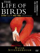 """The Life of Birds"" - Japanese Movie Cover (xs thumbnail)"