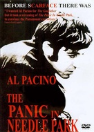 The Panic in Needle Park - DVD cover (xs thumbnail)
