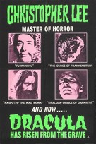 Dracula Has Risen from the Grave - British Movie Poster (xs thumbnail)