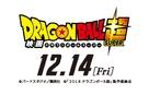 Doragon bôru chô: Burorî - Japanese Logo (xs thumbnail)