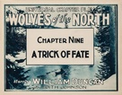 Wolves of the North - Movie Poster (xs thumbnail)